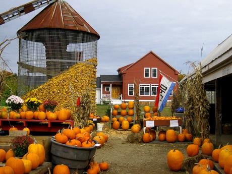 autumnroadfarm8