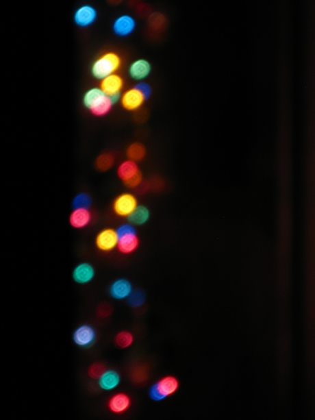 2014christmastree5