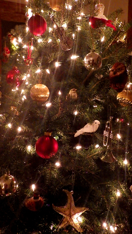 2016christmastree1